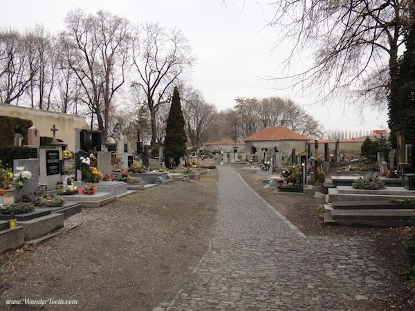 The graveyard at the Sedlec bone church