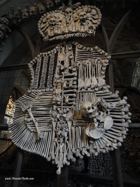 A coat of arms made from human bones in the bone church