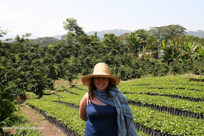 """A Visit to a coffee farm near the Colombian coffee region capital of Manizales"""