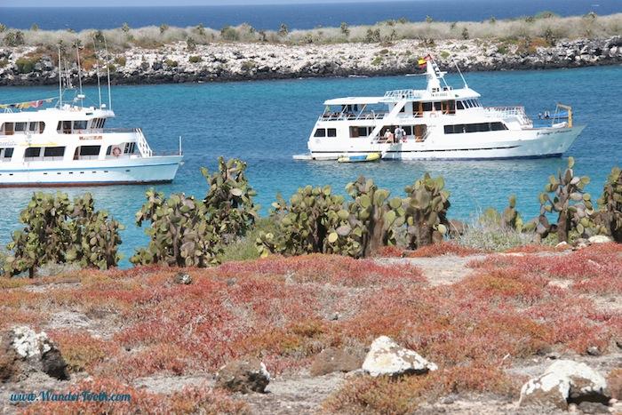 Galapagos-ing