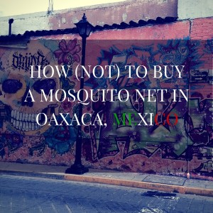 mosquito net oaxaca where to buy