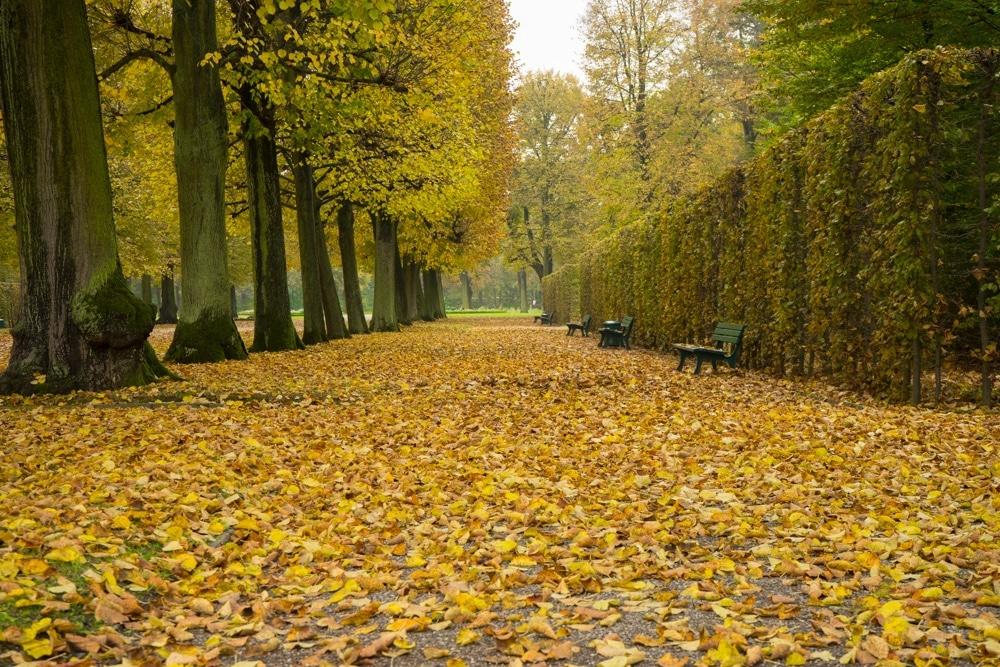 Herrenhausen Gardens Hannover
