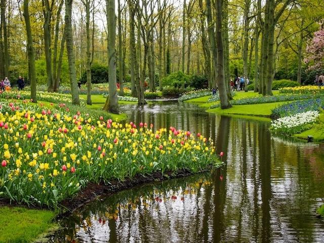 Keukenhof Gardens Best Places to Visit in Netherlands