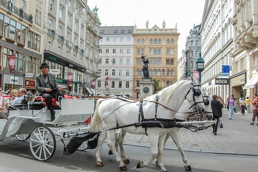 horse drawn carriage in vienna