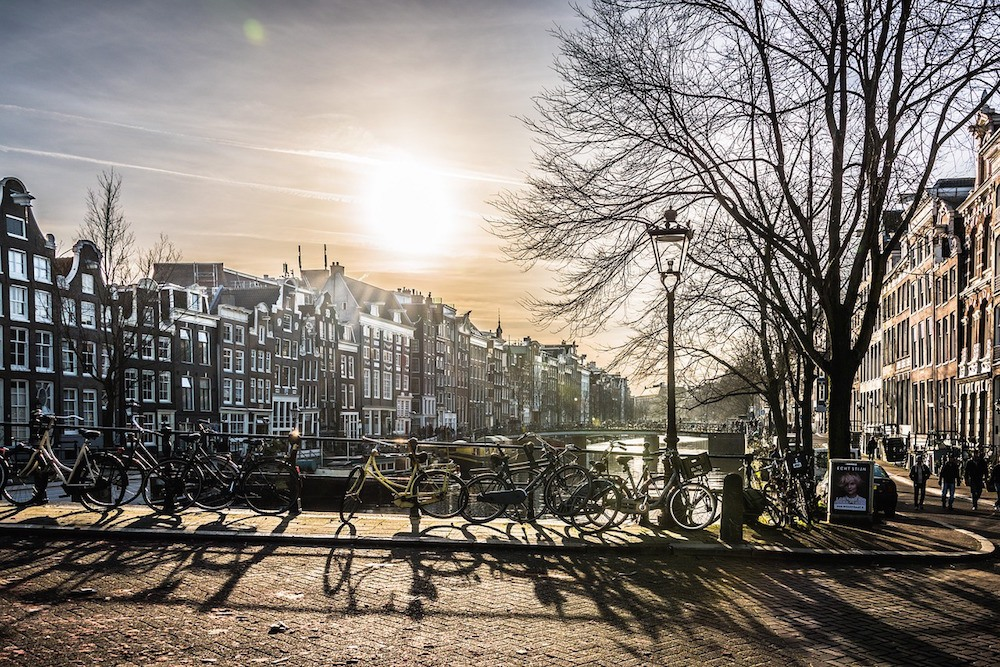 things to do in Amsterdam from a local