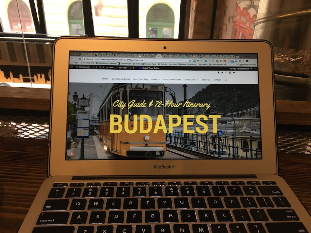 Places to Visit in Hungary Budapest Cafes
