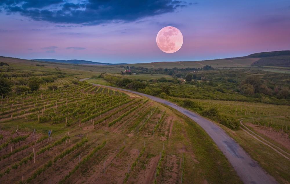 Places to Visit in Hungary Tokaj