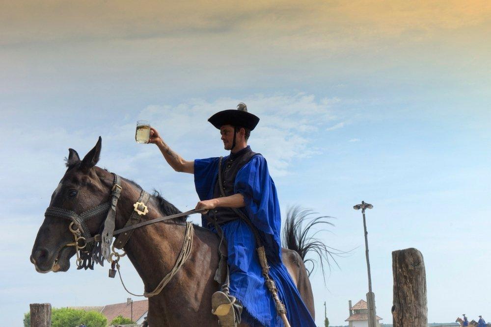 Hungarian Cowboy at a Hungarian Horse Show Kalocsa