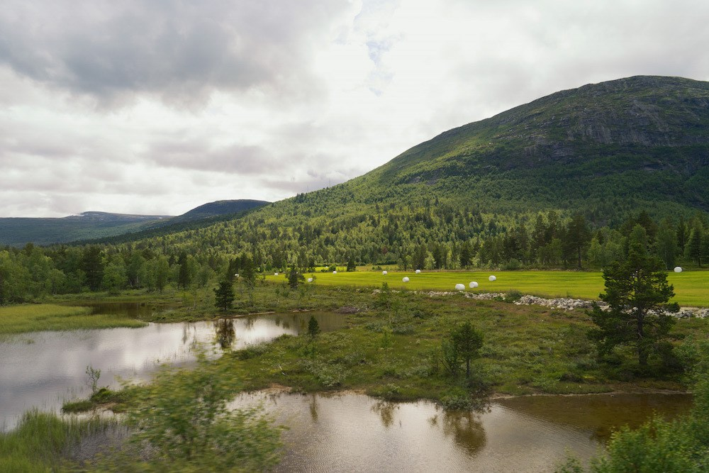 Dovre Rail Scenery Norway by Train