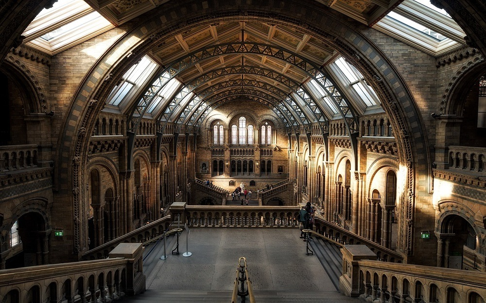 Make sure you visit the London Natural History Museum when you visit London