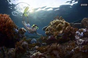 Bali Snorkelling Tour