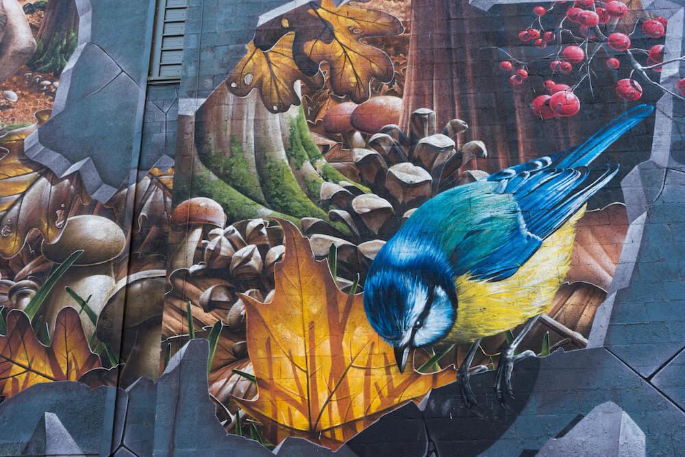 Glasgow Mural Trail Detail