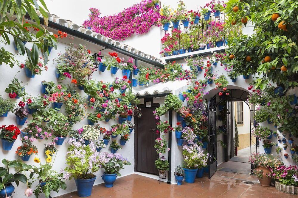 Cordoba Spain Flowers on the patio