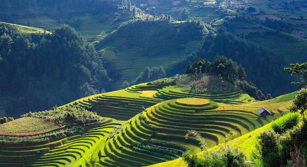 Vietname Scenery