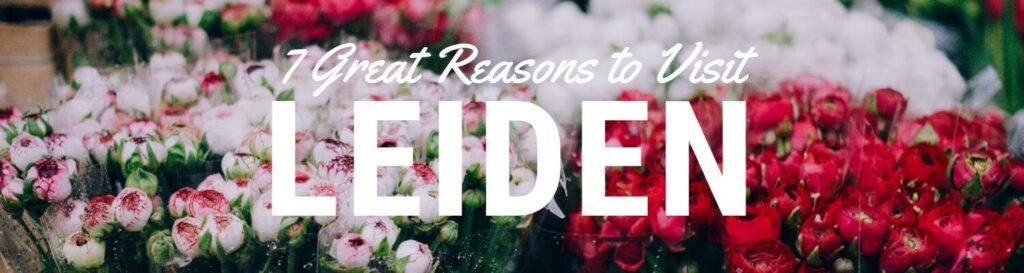 7 Reasons to Visit Leiden Netherlands