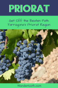 Tarragona and the Priorat Region