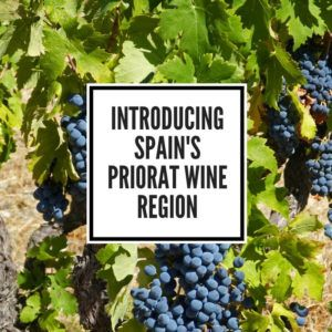 Spain wine holiday priorat feature image