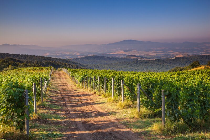 Chianti day trip from Florence Italy