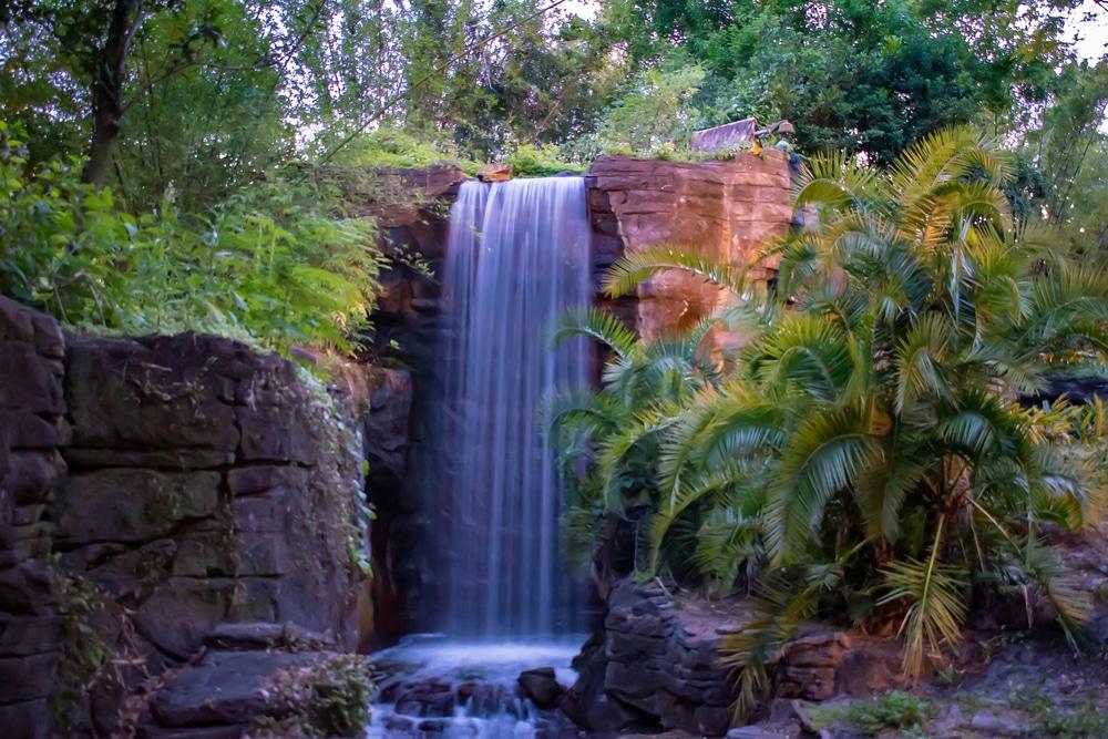 Waterfall in Disney's Animal Kingdom