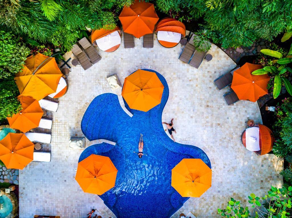 top view of pool at Nayara Gardens resort