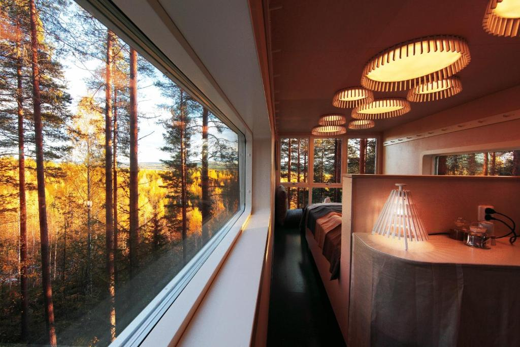 inside view of one of the tree hotels looking out the window