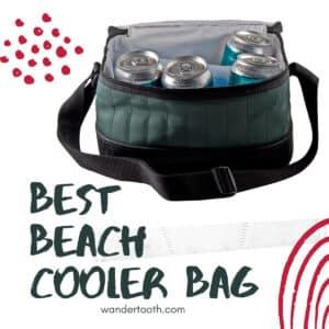 best beach cooler bag